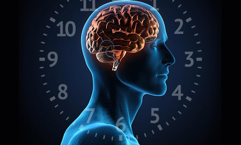 Умение быстро запоминать информацию – залог успеха в жизни