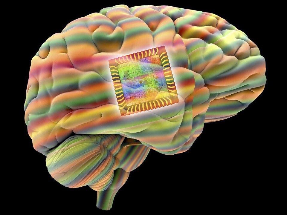 Визуализация памяти в мозгу