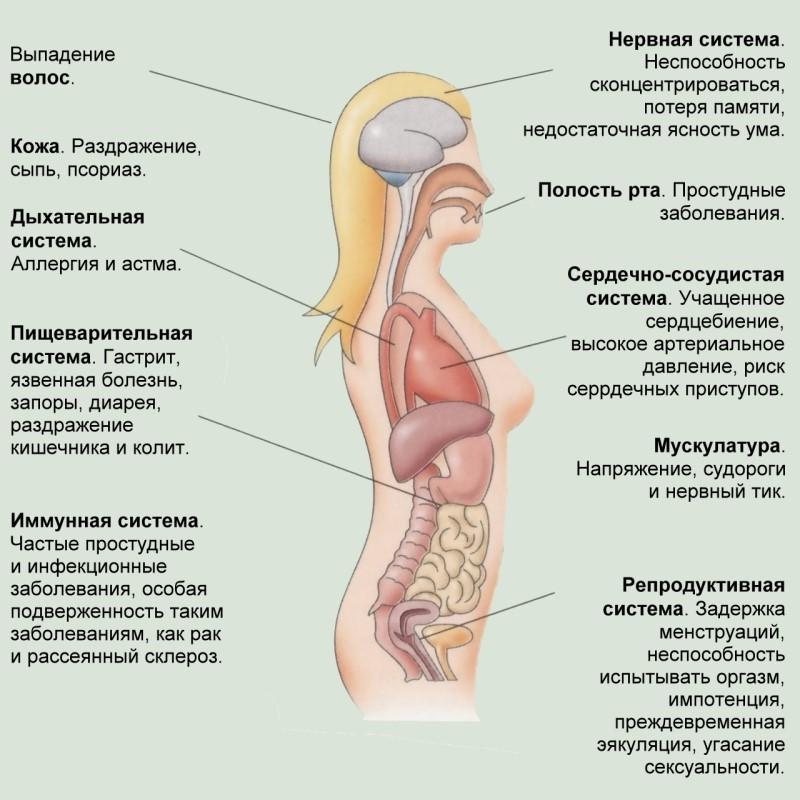 Физиологические проявления стресса