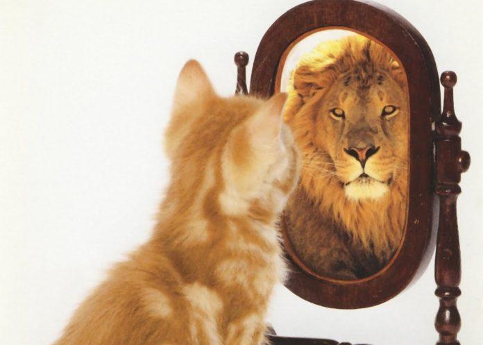 Самооценка не всегда должна быть адекватная, она должна мотивировать