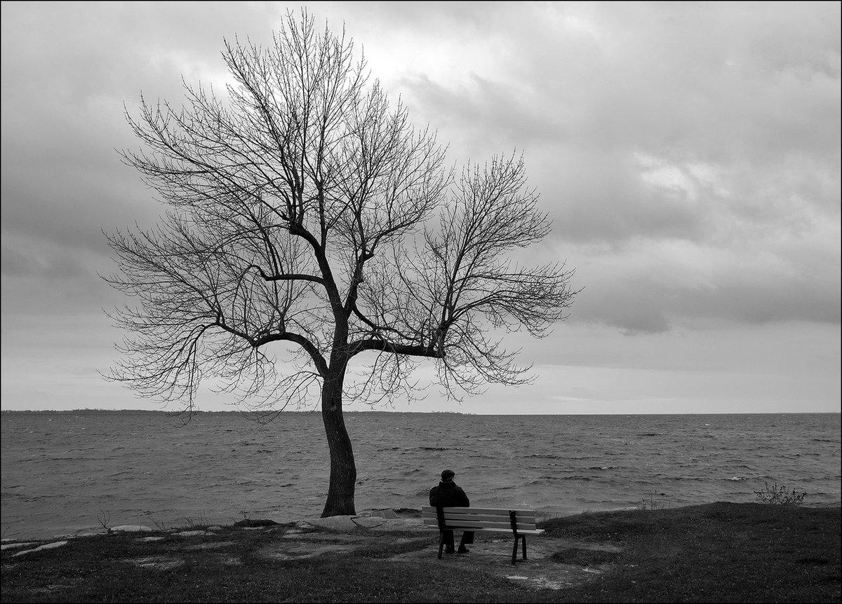 Повышенная самооценка – путь к одиночеству