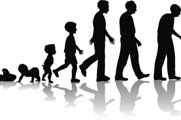 Этапы взросления