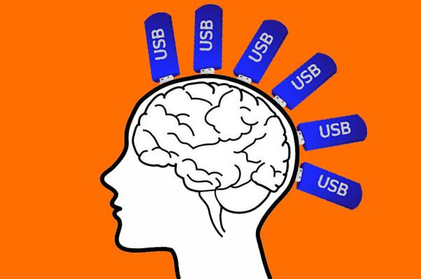 Долговременная память – как флешка в мозгу