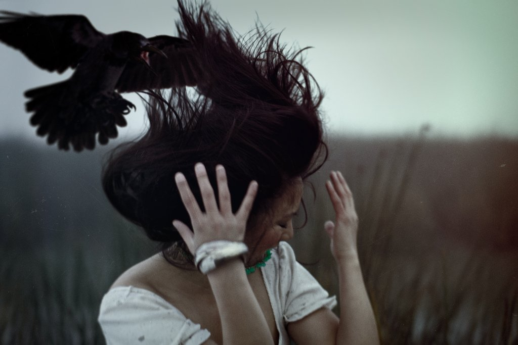 Птица над головой