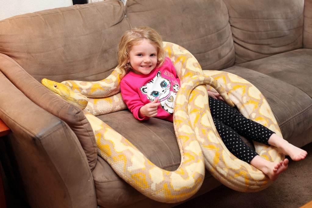 Родители могут внушать ребенку страх перед каким-либо объектом