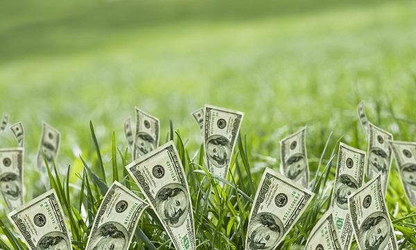 Финансовая удовлетворенность