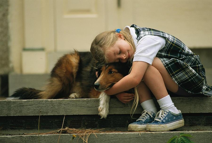 Чувство сострадания имеет разные формы проявления