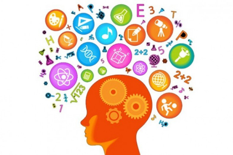 Когнитивные способности в голове
