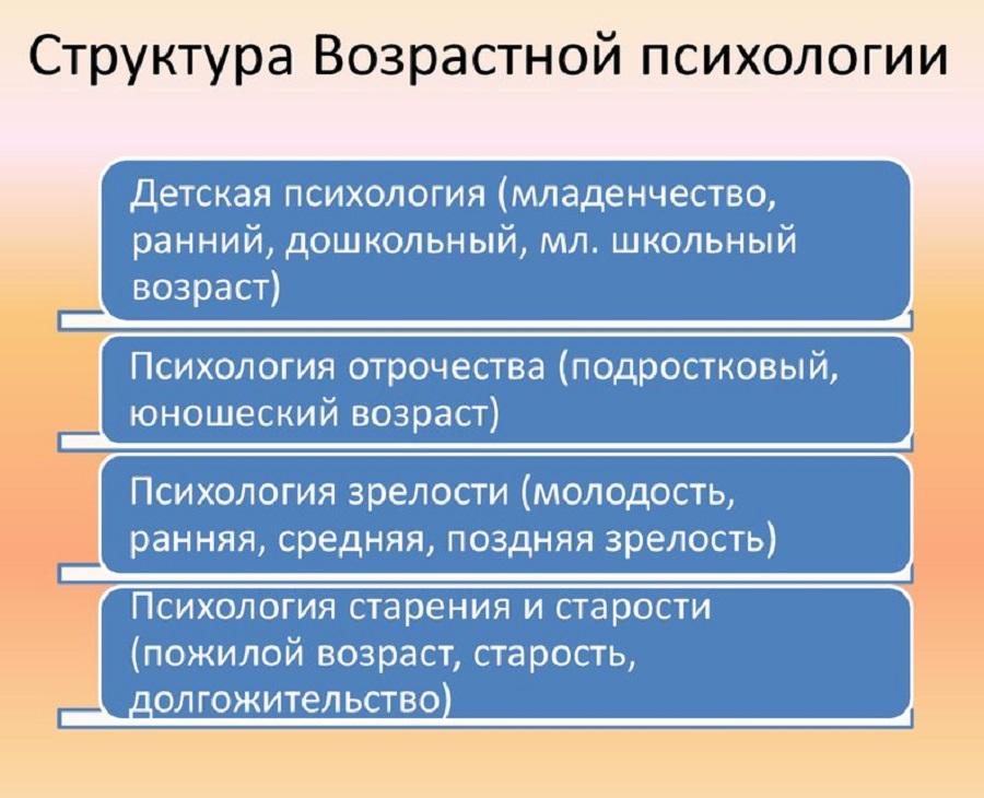 Структура ВП