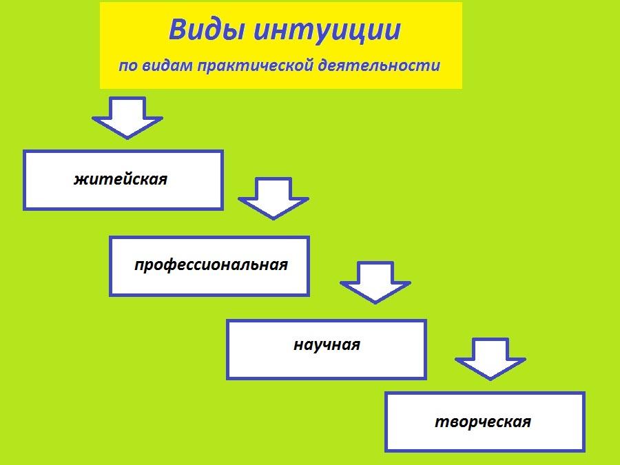 Виды интуиции по роду деятельности