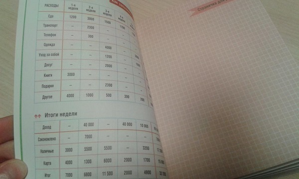 Дневник доходов и расходов