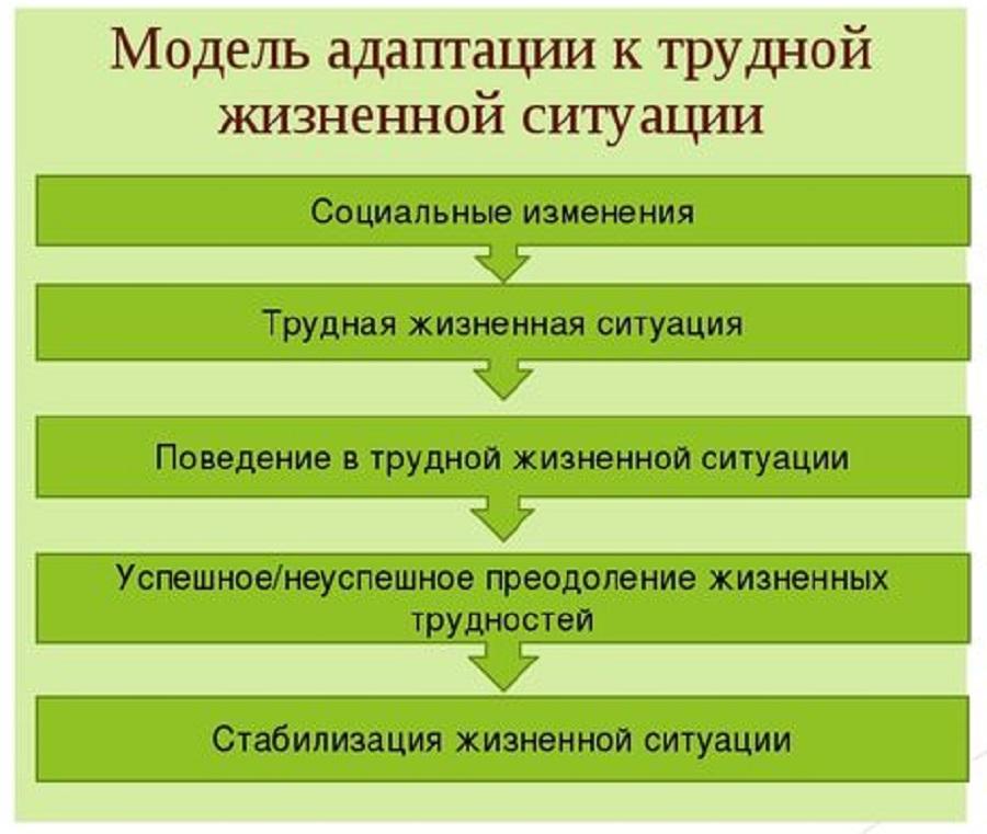 Модель адаптации к ТЖС